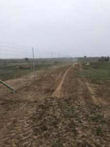 exotic deer and game fence construction in texas
